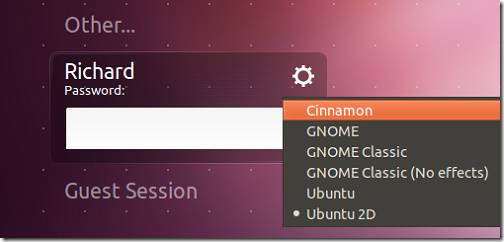 cinnamon_oneiric_3