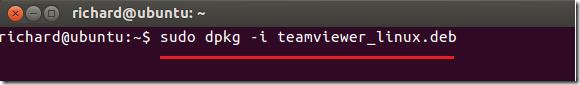 teamviewer_precise_1