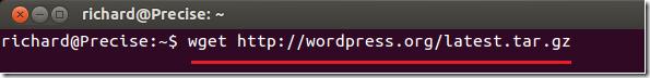 wordpress_precise