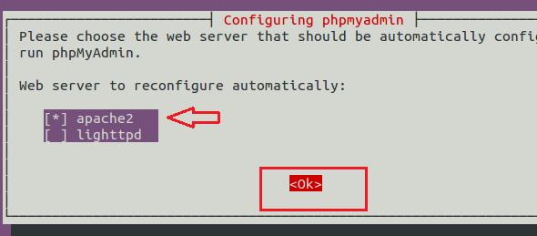 how to create database in ubuntu terminal