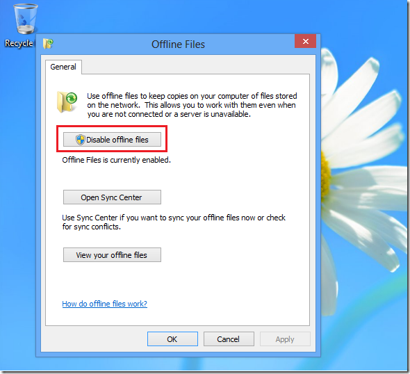 enable_offline_files_windows8_2