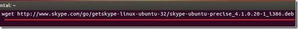 skype4-1_install_quantal_2