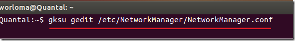 disable_network_manager_ubuntu
