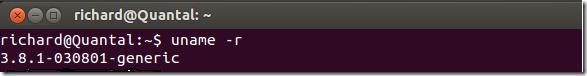 linux_kernel_81_ubuntu_1