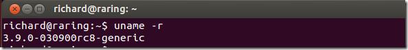 linux_kernel_39_ubuntu1304