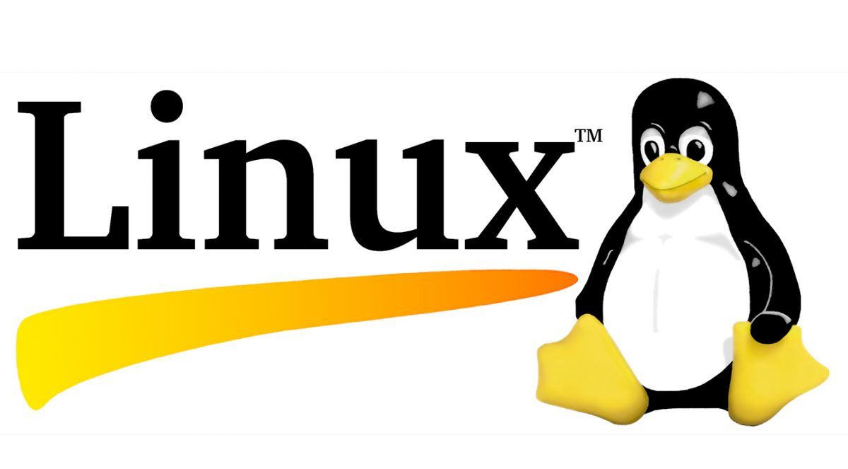 Everything You Need To Know About WC Linux